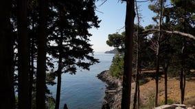 Île de Vido Photo libre de droits