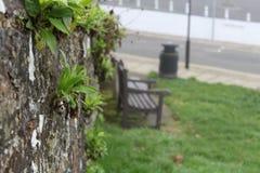 Île de Wight Photographie stock libre de droits