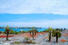 Île du sud de plaza Photos stock