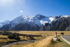 ÎLE DU SUD NOUVELLE-ZÉLANDE DE CUISINIER DE BÂTI Image libre de droits