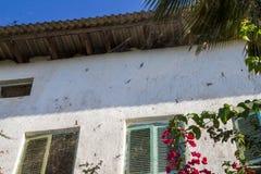 Île en pierre de Zanzibar de ville Photo stock