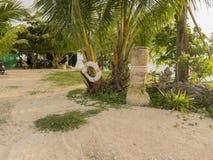 Île et été Photographie stock libre de droits
