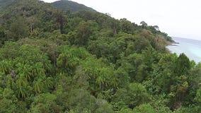 Île et forêt clips vidéos