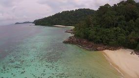 Île et forêt banque de vidéos