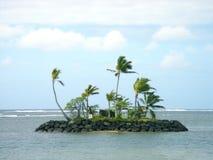 Île hawaïenne Photographie stock libre de droits