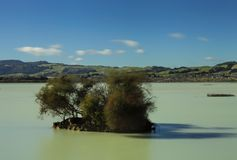 île Itty-décousue Lac sulphur de début de la matinée Image libre de droits