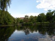 Île jardin public parmi étang, Boston, Boston le Massachusetts, Etats-Unis Image libre de droits