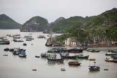 île long Vietnam d'ha de chat de compartiment de Ba Photos stock