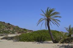 Île méditerranéenne rentrée par photographie Corse Images stock