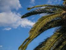 Île méditerranéenne rentrée par photographie Corse Photos stock