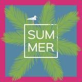 Île méditerranéenne rentrée par photographie Corse Fond de vecteur d'été avec la mouette Photographie stock libre de droits