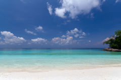 Île maldivienne images libres de droits