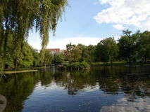 Île parmi la lagune, jardin public de Boston, Boston le Massachusetts, Etats-Unis Photos libres de droits