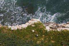 Île renversante images libres de droits