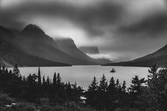 Île sauvage noire et blanche d'oie Stationnement national de glacier, Montana Photographie stock