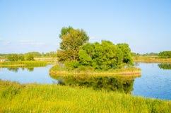 Île sur le lac Photo libre de droits