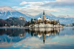 Île sur un lac saigné Photos libres de droits