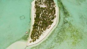 Île tropicale avec une plage sur l'atoll Île Balabac, Philippines d'Onok clips vidéos