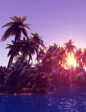 Île tropicale dans le coucher du soleil photographie stock libre de droits