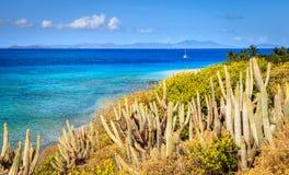 Île tropicale dans les Caraïbe Photo libre de droits