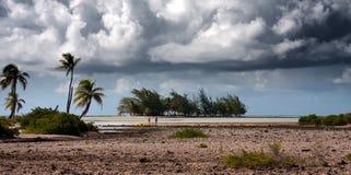 Île tropicale Zones et palmiers de corail Image libre de droits