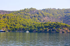 Île verte Images stock