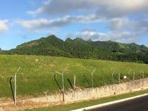 Îles Cook photographie stock libre de droits