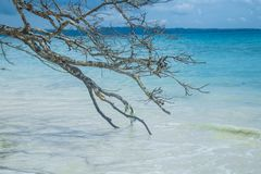 Îles d'Andaman Images libres de droits