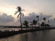 Îles de Kadamakudi, près d'Aluva, le Kerala Photos stock