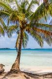 Îles de San Blas au Panama photo libre de droits