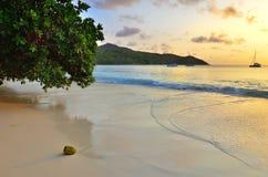 Îles des Seychelles, Praslin, Anse Latium Image stock