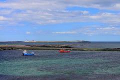Îles le Northumberland de Farne photographie stock libre de droits