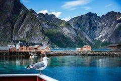 Îles Norvège d'îles d'archipel de Lofoten Image libre de droits