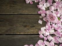 Ρόδινα τριαντάφυλλα στο ξύλινο διάστημα αντιγράφων στοκ φωτογραφίες