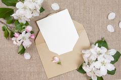 �ard with an beige envelope and white flowers of apple tree on beige fabric. Stock Photos