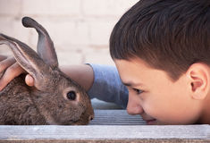 �hild and Rabbit Stock Photo