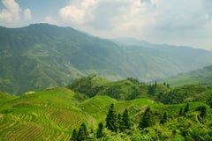 Όμορφη άποψη των σμαραγδένιων πεζουλιών ρυζιού Longjie's και των περιβαλλόντων βουνών στοκ εικόνες με δικαίωμα ελεύθερης χρήσης