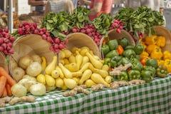 Όμορφη επίδειξη των ραδικιών, της κίτρινης κολοκύνθης, των κρεμμυδιών, της πιπερόριζας και ενός verity των χρωματισμένων πιπεριών στοκ φωτογραφία με δικαίωμα ελεύθερης χρήσης