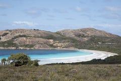 Όμορφη κάλυψη κάρδων Cape LE στο Grand National πάρκο στοκ φωτογραφία με δικαίωμα ελεύθερης χρήσης