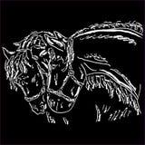 Όμορφη σκιαγραφία κεφαλιών αλόγων που απομονώνεται στο άσπρο υπόβαθρο στοκ εικόνα με δικαίωμα ελεύθερης χρήσης