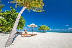 Όμορφη παραλία με τους φοίνικες και τον ευμετάβλητο ουρανό Έννοια υποβάθρου διακοπών ταξιδιού θερινών διακοπών στοκ εικόνες