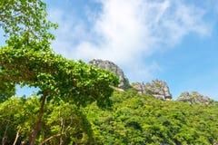 Όμορφοι βράχοι με τα δέντρα και βλάστηση με το μπλε ουρανό στοκ φωτογραφία με δικαίωμα ελεύθερης χρήσης