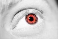Όμορφος ένας οξυδερκής φαίνεται μάτι Κλείστε αυξημένος στοκ φωτογραφία