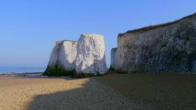 Όμορφος κόλπος βοτανικής στο Κεντ Αγγλία με τους άσπρους βράχους του απόθεμα βίντεο