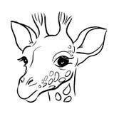 όμορφο μεγάλο κεφάλι giraffe γραμμών της διανυσματικής απεικόνισης διανυσματική απεικόνιση