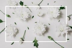 Όμορφο floral σχέδιο φιαγμένο από άσπρα floral, πράσινα φύλλα, κλάδοι στο άσπρο υπόβαθρο με ένα συρμένο πλαίσιο Επίπεδος βάλτε, τ στοκ φωτογραφίες με δικαίωμα ελεύθερης χρήσης