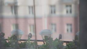 Όψη από το παράθυρο στην πόλη απόθεμα βίντεο