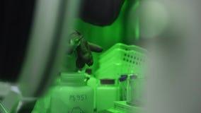 Όπλα επιστημόνων που λειτουργούν στο κενό κιβώτιο εργαστηρίων για την έρευνα των βιολογικών ουσιών απόθεμα βίντεο
