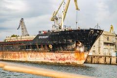 """ΣΕΒΑΣΤΟΥΠΟΛΗ, ΚΡΙΜΑΙΑ - ΤΟ ΣΕΠΤΈΜΒΡΙΟ ΤΟΥ 2014: Ξηρό φορτηγό πλοίο """"Όρενμπουργκ """" στοκ εικόνες με δικαίωμα ελεύθερης χρήσης"""