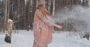 Σε αργή κίνηση - πάλη χιονιών ζεύγους σε έναν τομέα Τελειώνουν την πάλη τους καλοί όροι με υψηλά πέντε απόθεμα βίντεο